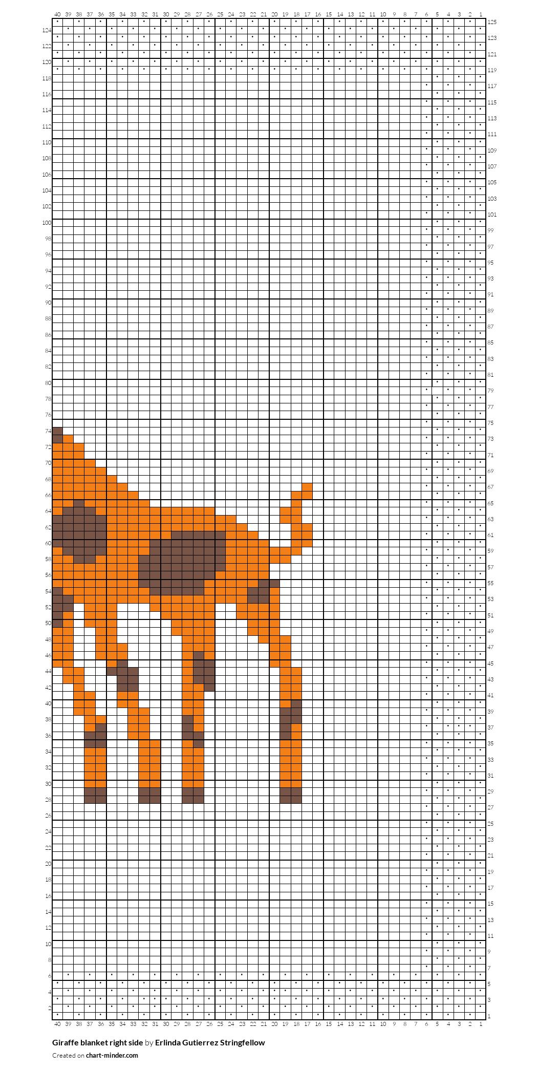 Giraffe blanket right side