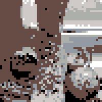 IMG-20210110-WA0008.jpg