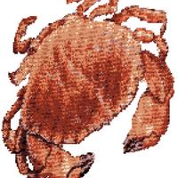 Crab KF Square