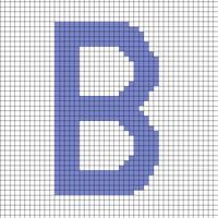 B Bag