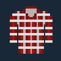 Sam's flannel