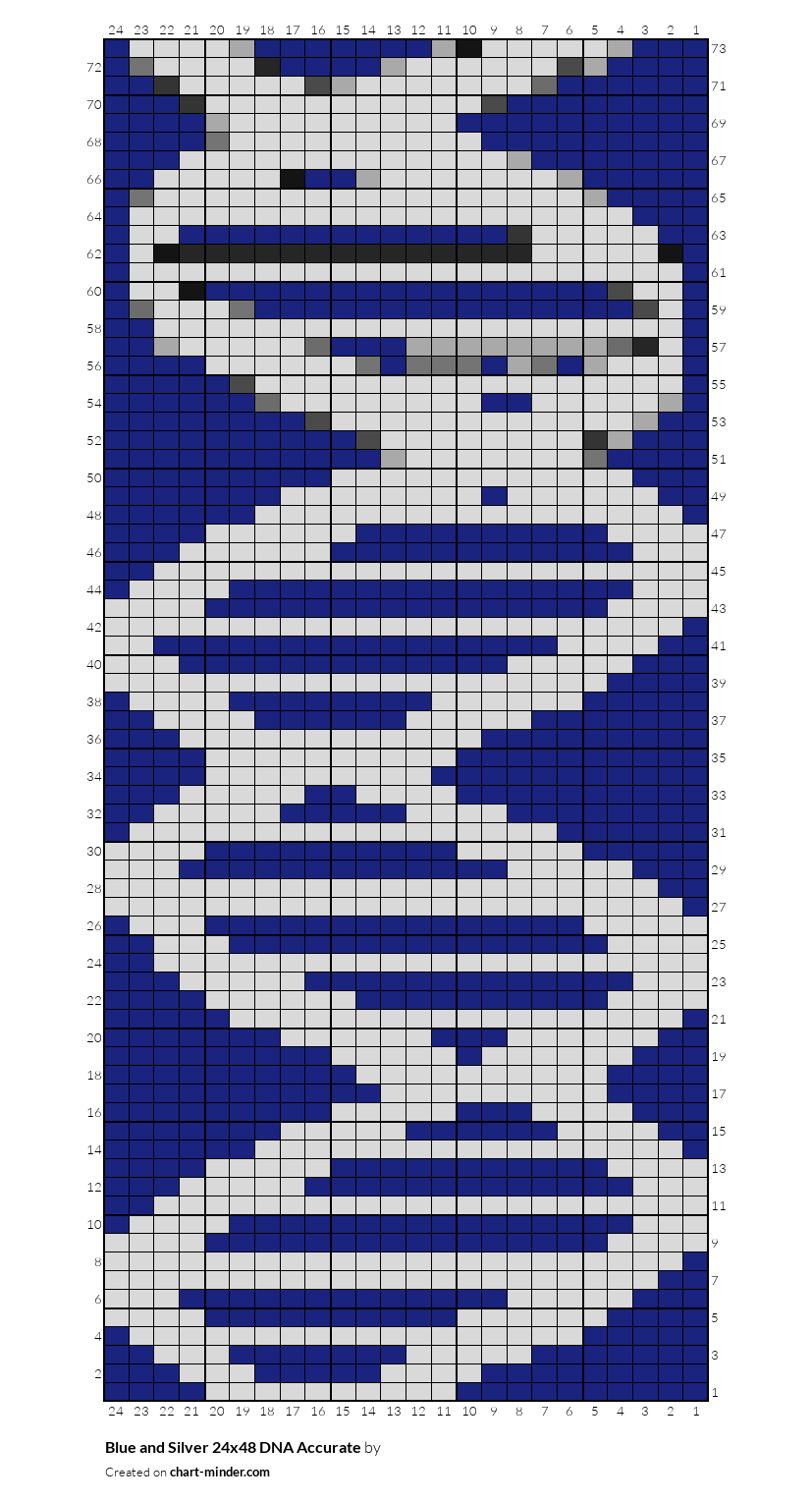 Blue and Silver 24x48 DNA Accurate