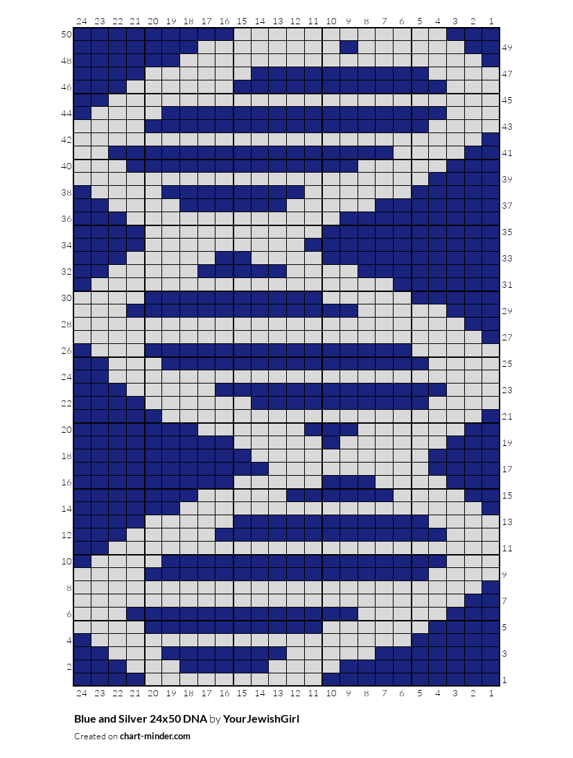 Blue and Silver 24x50 DNA