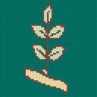 compound leaf.png